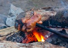 Free Sausage On Campfire Stock Photo - 20081430
