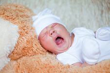 Free Adorable Newborn Baby Royalty Free Stock Images - 20084339