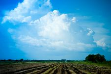 Field With Blue Sky In Thailand Royalty Free Stock Photos