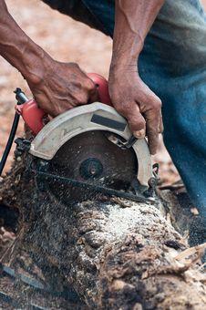 Timber Cutting Stock Photos