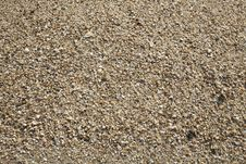 Free Cockleshells Background Royalty Free Stock Photos - 20086698