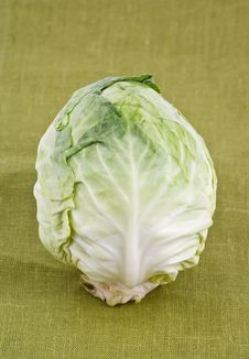 Free Cabbage Stock Images - 20087734