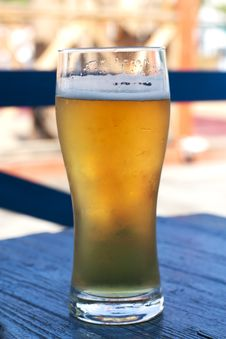 Free Glass Of Beer Royalty Free Stock Image - 20087826