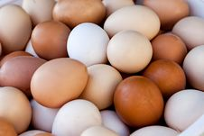 Free Lot Of Eggs Stock Images - 20088674