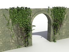 Free A Stone Wall With Ivy №2 Stock Images - 20088914