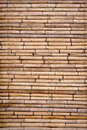 Free Tropical Bamboo Wall Stock Images - 20099504