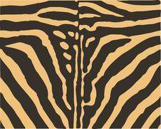 Free Animal_skin_texture Stock Photography - 20090142