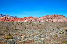 Free View Of Mojave Desert. Royalty Free Stock Photography - 20090577