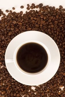 Free Cup Of Coffee Stock Images - 20090884