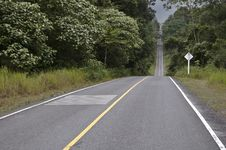 Free Asphalt Road In Forest Stock Photos - 20097283