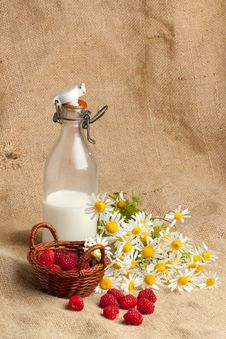 Free Fresh Ripe Raspberries And Camomile Flowers Stock Image - 20097591