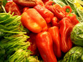 Free Peppers Stock Photo - 2014190
