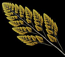 Free Wheat Stock Image - 2011041