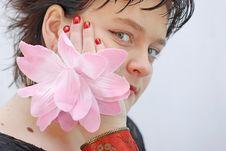 Free Flower Royalty Free Stock Photo - 2013035