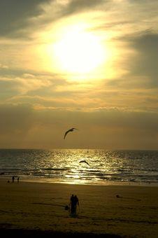 Free Sea Sunset Royalty Free Stock Photos - 2013088