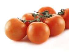Free Red Tomatoes Stock Photography - 2013492