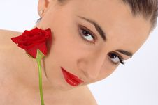 Free Isolated Portrait Of Beauty With Rose Royalty Free Stock Images - 2014229