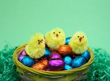 Free Easter Eggs And Three Chicken Royalty Free Stock Photography - 2014247