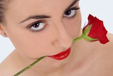 Free Isolated Portrait Of Beauty With Rose Royalty Free Stock Photo - 2014365