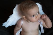 Free Angel Baby Stock Photography - 2014702