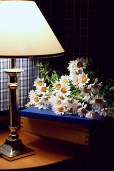Free Lamp And Daisies Royalty Free Stock Photography - 2014837