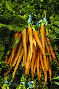 Free Bunch Of Carrots Royalty Free Stock Photography - 2018237