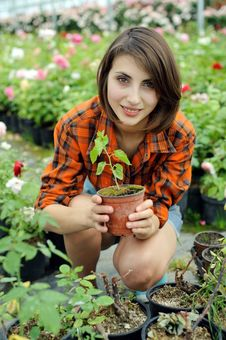 Free Girl With A Plant Stock Images - 20102284