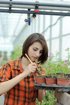 Girl In A Greenhouse Royalty Free Stock Photos