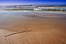 Free Baltic Sea In Windy Day. Royalty Free Stock Photos - 20102958