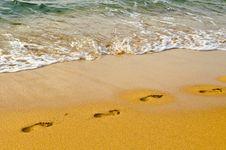 Free Beach Sand. Stock Image - 20103301