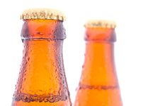 Free Beer Bottles Stock Photography - 20103332