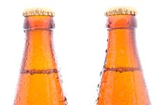 Free Beer Bottles Royalty Free Stock Images - 20103349