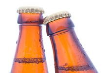 Free Beer Bottles Royalty Free Stock Images - 20103439