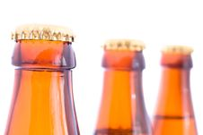 Free Beer Bottles Royalty Free Stock Photo - 20103515
