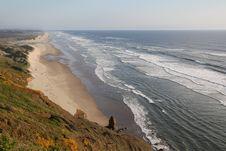 Free Beautiful Beach In California Royalty Free Stock Photo - 20104315