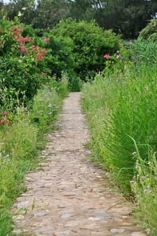 Free Garden Path Royalty Free Stock Photo - 20104645
