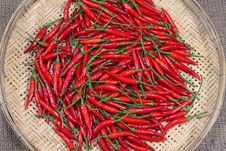 Free Red Chili Peppers On Bamboo Weave Royalty Free Stock Photo - 20105375