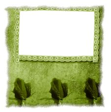 Free Old Frame Floral Background Blank Stock Photography - 20108172