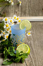 Free Glass Of Lemonade With Mint Royalty Free Stock Photos - 20115098