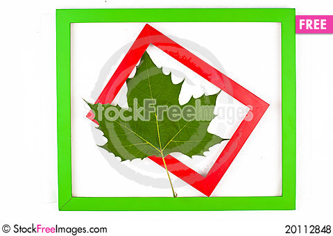 Free Green Leaf In Red And Green Frames Royalty Free Stock Photos - 20112848