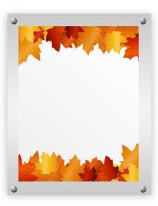 Advertising Autumn Leaves Stock Images