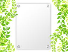 Blank Paper With Leafs Royalty Free Stock Images