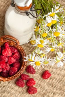 Free Fresh Ripe Raspberries And Camomile Flowers Royalty Free Stock Photography - 20115137