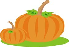 Free Pumpkin Crop Stock Photos - 20115433