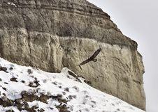 Free Saskatchewan Badlands Stock Photography - 20116522