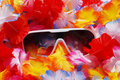 Free Celebration Background With Lei And Sunglasses Royalty Free Stock Photos - 20122358
