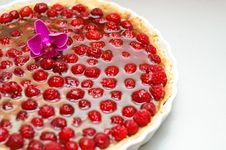 Tart With Raspberries And Curd Royalty Free Stock Photography