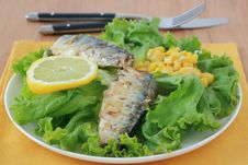 Free Salad With Sardines Stock Photos - 20121013