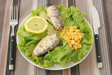 Free Salad With Sardines And Corn Stock Photo - 20121020
