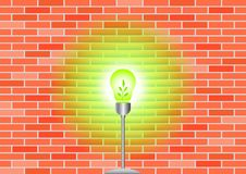 Free Eco Bulb Stock Photos - 20121733